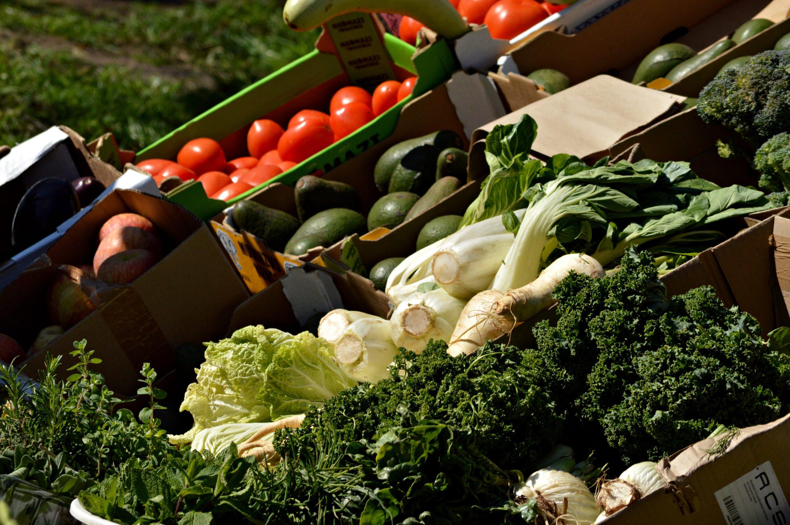 año frutas y verduras gobierno de Aragón